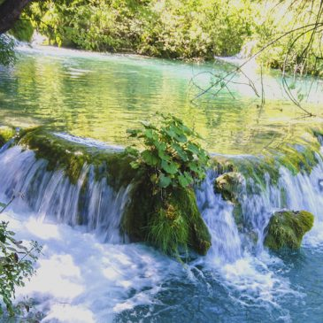 Plitvice National Park: In the heart of Croatia !