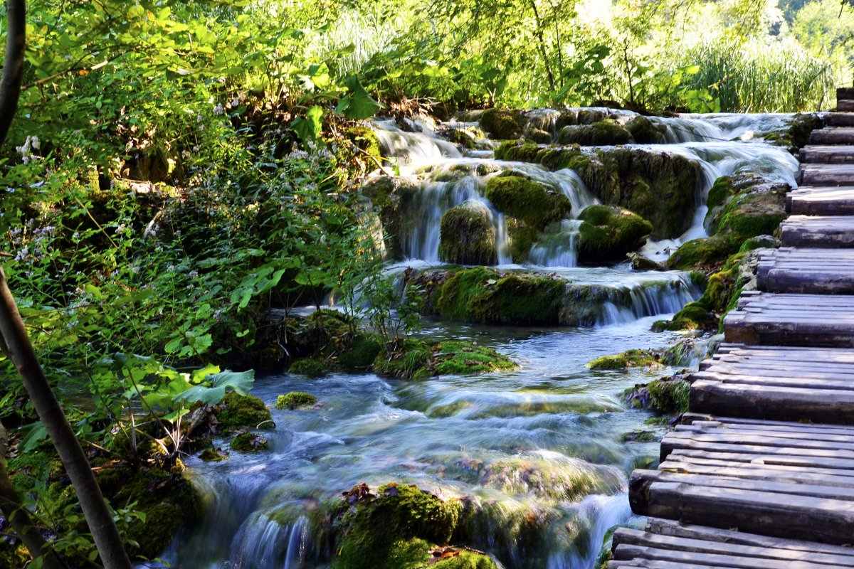 A gushing stream @ Plitvice
