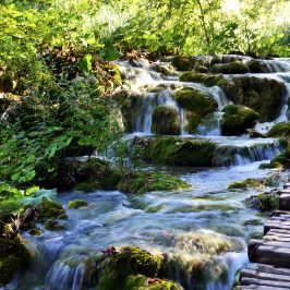 Plitvice : A day of cascading waterfalls !!