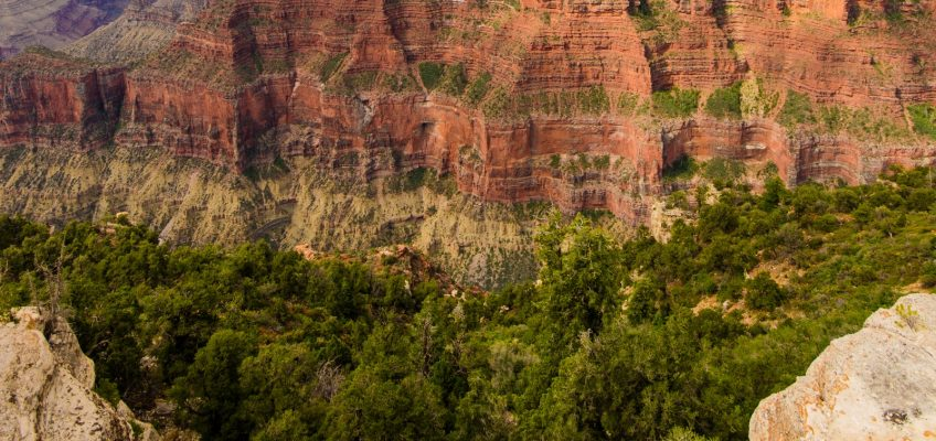 Grand Canyon, USA Part 1 : Grandeur in its Essence